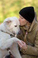(Alberello) Tags: dog love dogs kiss venus bokeh marta beso bacio sfuocato pet alberello pasqualespagnuolo martallobet alberellophotography