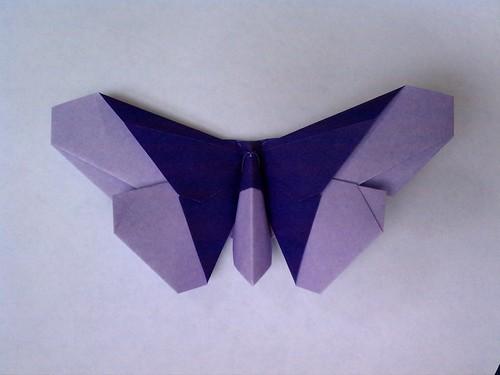 Joyce Rockmore Butterfly