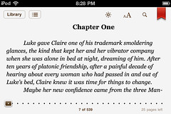 iBooks for iPhone: bookmark, with tools showing