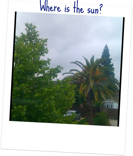 IMAG0222-2