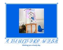 A Bluebird Wish
