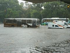 Palermo inundado 2
