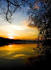 Sunset at Rusaka Lake (Adam Machowiak) Tags: blue trees sunset sky sun lake water yellow reflections poland soce pozna zachd rusaka jezioro blueribbonwinner drzewa flickrbestpics