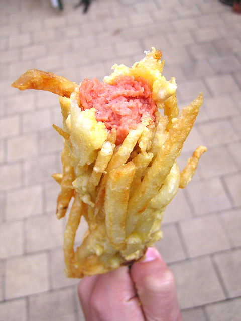 French fry coated hotdog