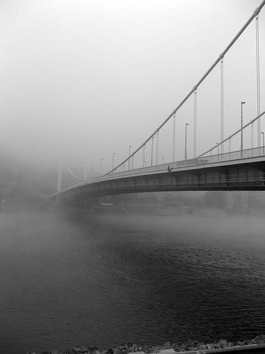 Erzsébet bridge