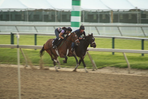 morning workout at Pimlico