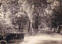 Jelgava - 1915/1916 (Jens-Olaf) Tags: germany russia great latvia war2 lettland jelgava 1weltkrieg ostfront easternfront mitau