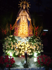 Our Lady of the Miraculous Medal on her carroza