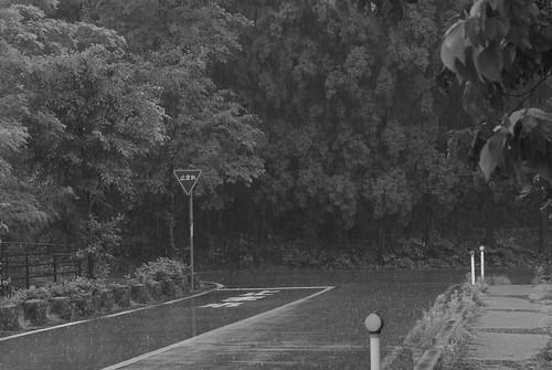 20080629038雨