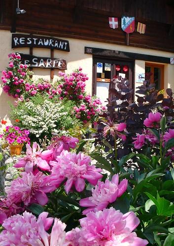 Flowers at Le Sarpe Restaurant, Les Praz de Chamonix
