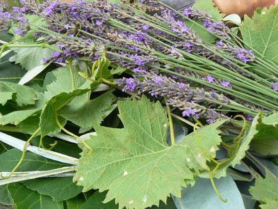lavande et feuilles de vigne.jpg