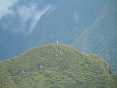 Tour de MachuPicchu (15) (Wade Henricksen) Tags: peru machu picchu machupicchu