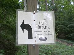 caffe_driade_0461
