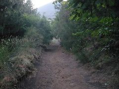 L'impervio sentiero (Giuseppe Palazzolo) Tags: etna lunapiena colatalavica geppo1975 giuseppepalazzolo