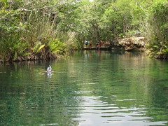 esnorquel cenotes de tulum, gran cenote