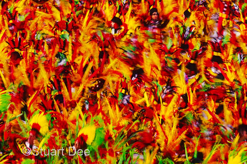 carnival in rio de janeiro pictures. Carnaval, Rio de Janeiro,