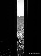 La finestra sul mare (AmicaB) Tags: barca mare noiretblanc persiana biancoenero flickraward beatricebruni nikonflickraward