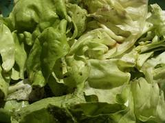 Salat med balsamico, olivenolie, salt og peber