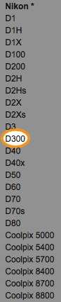 Nikon D300 NEF / RAW file support in the Photoshop Camera RAW plug-in