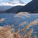 富士山:Motosu Lake with Mt.Fuji in autumn