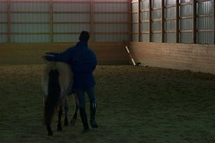 Moving Laterally (janred) Tags: dressage carriagedriving breezie longreining chalamet ericchalamet