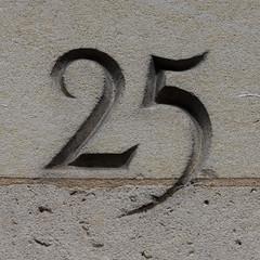 25 (Leo Reynolds) Tags: number 25 canon eos 40d 0003sec f67 iso100 160mm 0ev xsquarex numberset00 xleol30x xxnumbersetxx hpexif xratio1x1x xxx2008xxx 20s xxxtensxxx