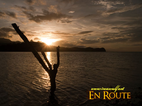 Boquete Island Lone Branch at Sunset