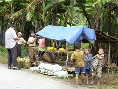 Daily life in Laos (B℮n) Tags: papaya bamboo watermelon bananas laos luangprabang hmong jackfruit kidshavingfun smilingkids vegetablegardens ethnicgroups handtractor supportthemselves timelesslaos laughterofchildren friendlypeopleofloas windowsnapshot sellingvegetablesalongtheroad bustriptoluangprabang