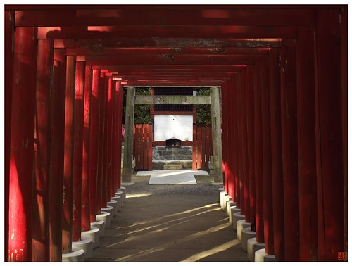 Reds in the Shrine 081224 #02