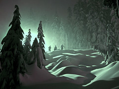 Three Snow Men (Christopher J. Morley) Tags: trees winter shadow cloud mountain snow canada cold fog night vancouver snowshoe bc britishcolumbia curves silhouettes mount seymour explored favemegroup6 favemegroup10 superfaveme world100f goldenheartaward 100commentgroup artofimages bestcaptureaoi 200faves123