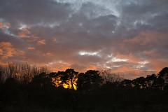 Tramonto a Pratosardo (candido33) Tags: sardegna italy alberi mirror italia tramonto nuvole cielo riflessi sera specchio laghetto stagno nuoro zoneumide sughere pratosardo photobyaureliocandido