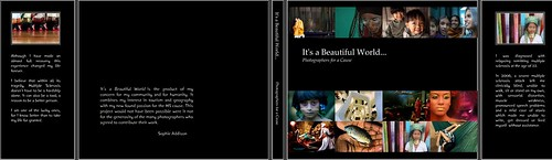 It's a Beautiful World Cover
