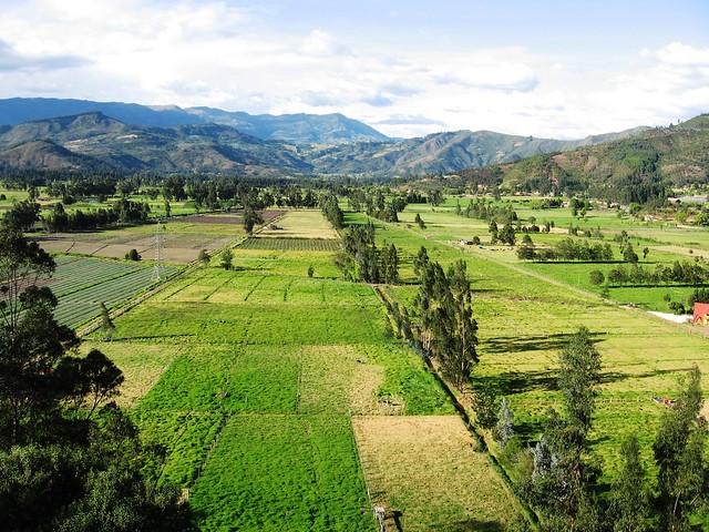 Cultivos en las planicies de Boyacá, Colombia.