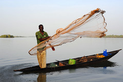 Somono  man fishing in the Niger (luca.gargano) Tags: africa net niger boat fishing fisherman fishermen tribal mali gargano lucagargano