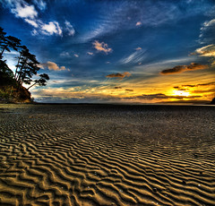 Low Tide Sunset (Nazar's Collection) Tags: blue pakistan sunset newzealand tree yellow pattern auckland ripples lowtide northland abbas nazar wattlebay nazarab nazarabbas