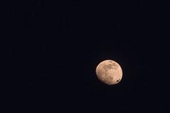 09-Moon-8530 (Kadath) Tags: winter sky moon airplane nikon 09 astronomy 2009 posten oneinamillion d300 18200vr twoinamillion