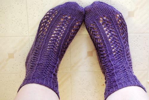 Purple Hedera