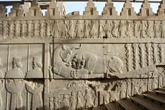 Persepolis - Shiraz - Iran |   -  (Pedram Veisi) Tags: iran shiraz   fars parseh      farvahar cyrusthegreat faravahar  dariusthegreat  achaemeniddynasty perseplis