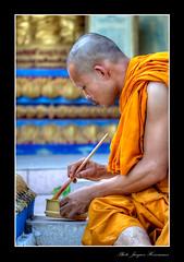Thai monk Koh Samui (Samuizoom) Tags: thailand buddha religion thai kohsamui samui siam bigbuddha thailande autofocus bonze moine earthasia mygearandme