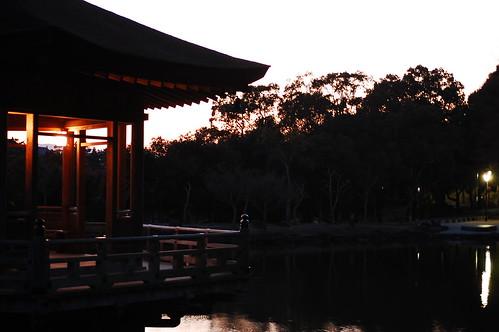 Light & darkness in Sagiike