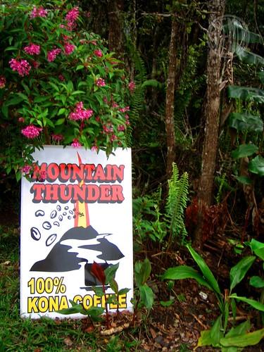 Mountain Thunder Coffee Plantation