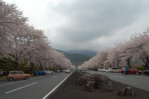 2008-04-16  Fuji Reien