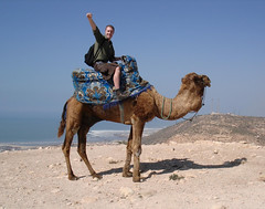 Colin and Camel.jpg