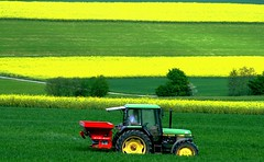 Deere colors!! (swisscan) Tags: tractor green field grass yellow switzerland bravo farm farming agriculture johndeere rapeseed firstquality nassenwil abigfave platinumphoto colorphotoaward superaplus aplusphoto visiongroup holidaysvacanzeurlaub favemegroup4 favemegroup7 diamondclassphotographer flickrdiamond ysplix theunforgettablepictures colourartaward goldstaraward world100f magicdonkeysbest mdtbmasterpiece