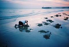 good old terry (lomokev) Tags: sea sky man reflection male beach pier lomo lca lomography sand kodak dusk digging tide kodakportra400vc lomolca terry lowtide portra dig lomograph brightonpier palacepier lugworm kodakportra400 kodakportra lugworms deletetag file:name=080603lomolca400asa042 roll:name=080603lomolca400asa