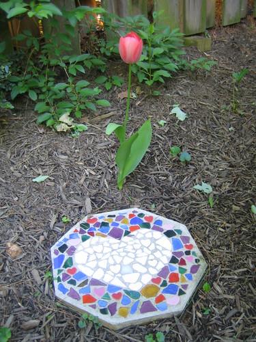 Pamuk's flower