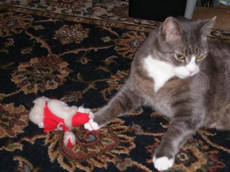 Katley and his Santa