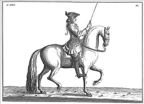 01-El paso de un caballo adiestrado