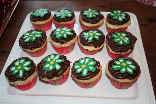 Studio Logo Daisy on Cupcakes