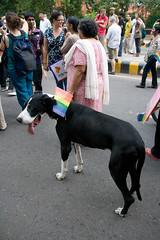 Gay_Pride-45